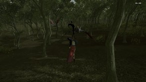 Forest Mage video