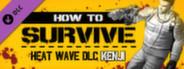 Kenji alternate skin