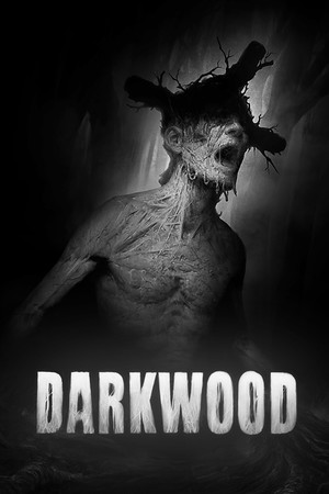 Darkwood poster image on Steam Backlog