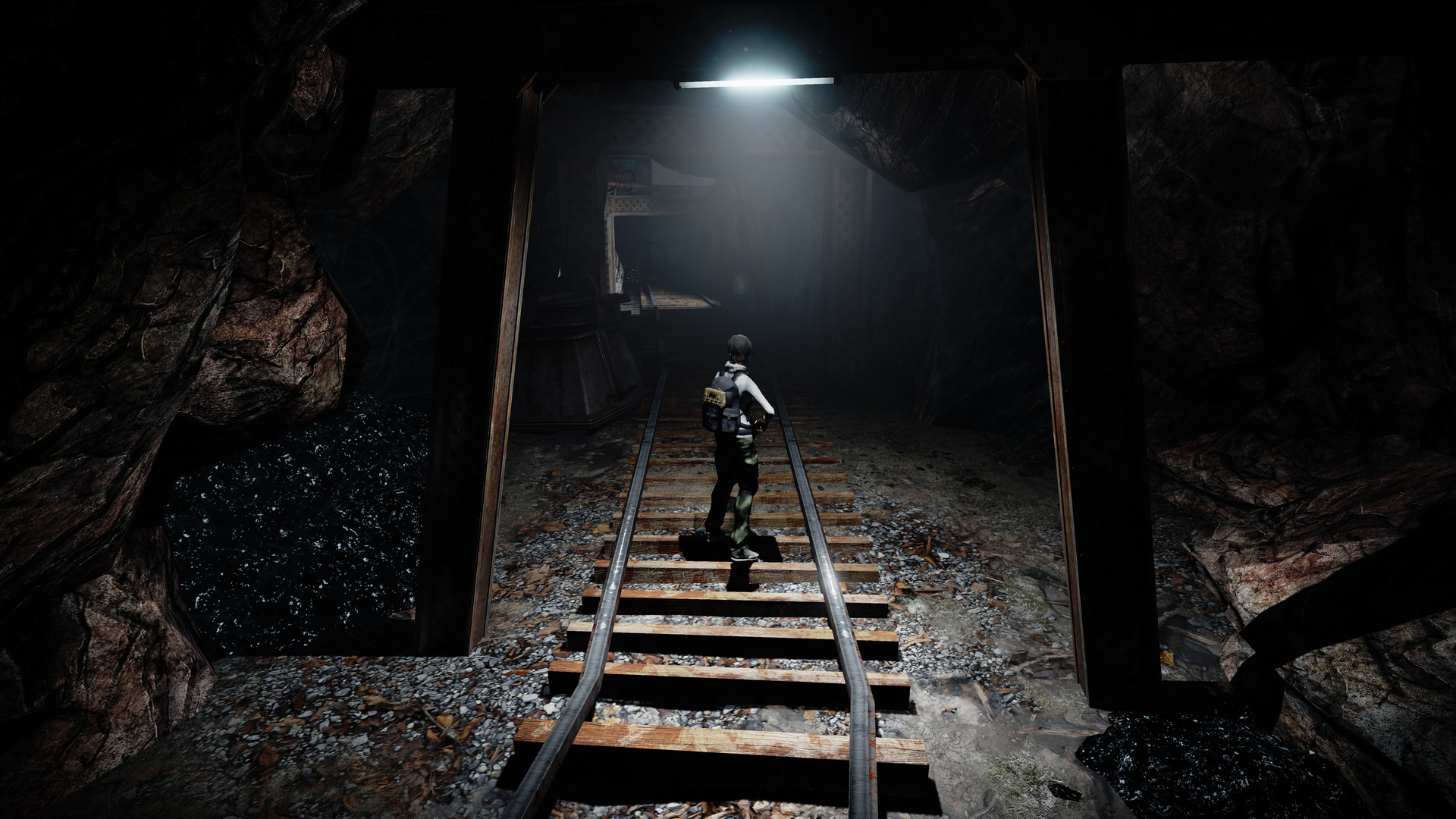 Alone In The Dark Illumination On Steam