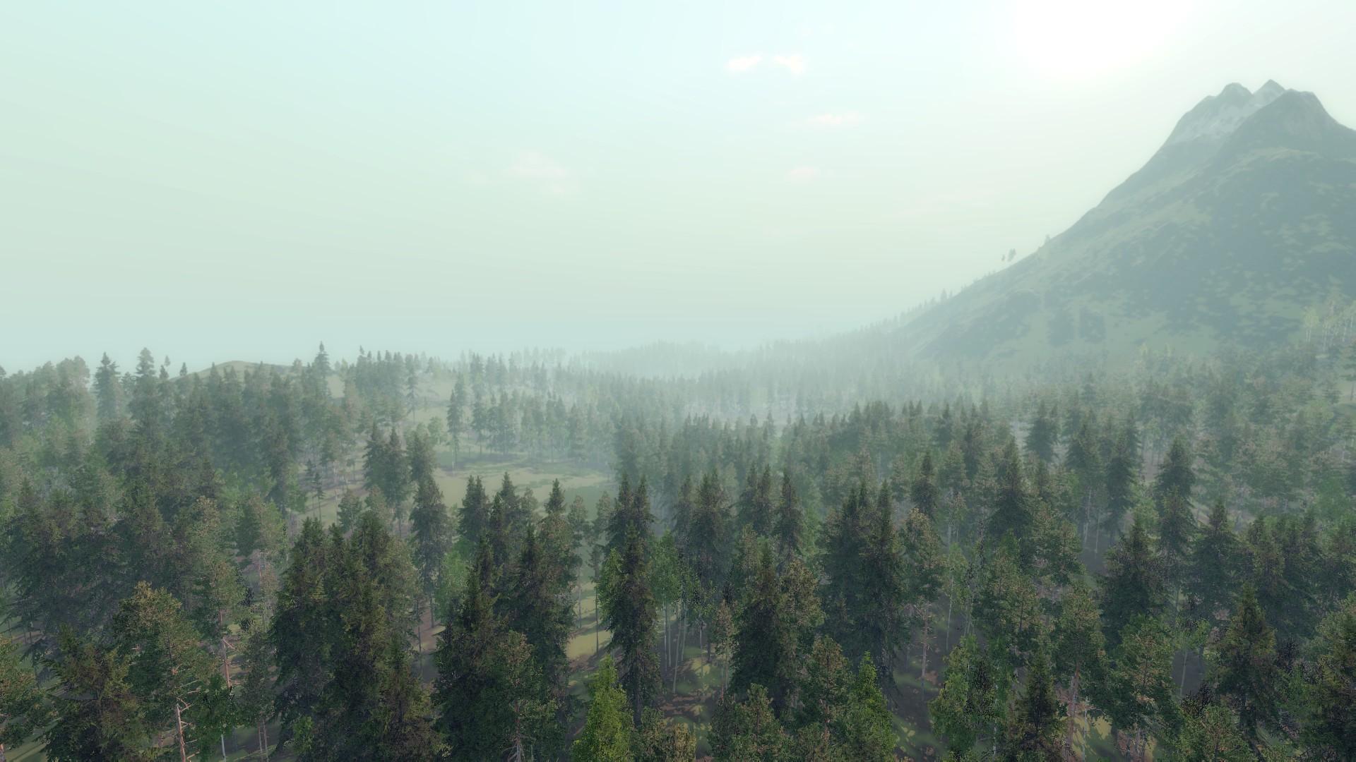 лес чудес играть онлайн бесплатно полная версия