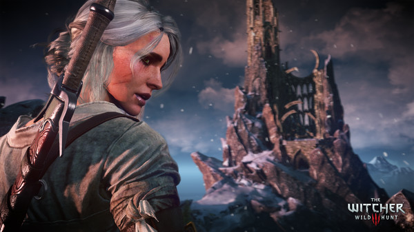 The Witcher 3: Wild Hunt Free Steam Key 5