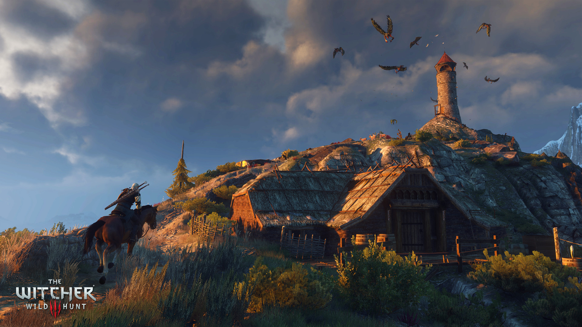 The Witcher® 3: Wild Hunt Resimleri