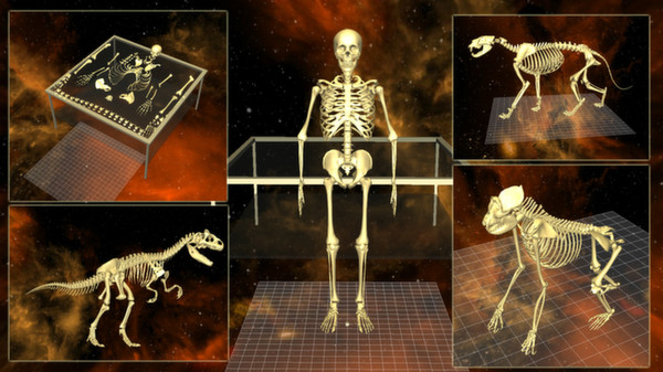 скриншот 5 Skeletons Pack 0