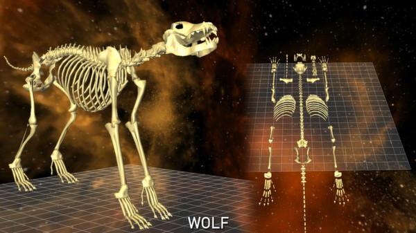 скриншот 5 Skeletons Pack 4