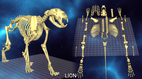 скриншот 5 Skeletons Pack 3