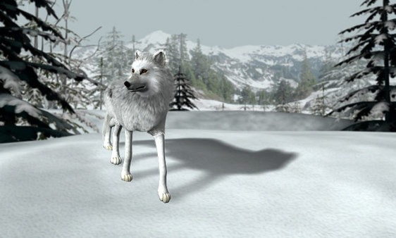 Nancy Drew®: The White Wolf of Icicle Creek
