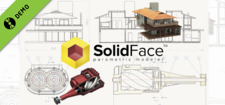 SolidFace Pro 2015 Demo
