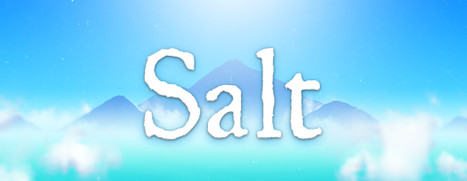 Salt - 盐