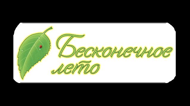 Everlasting Summer logo
