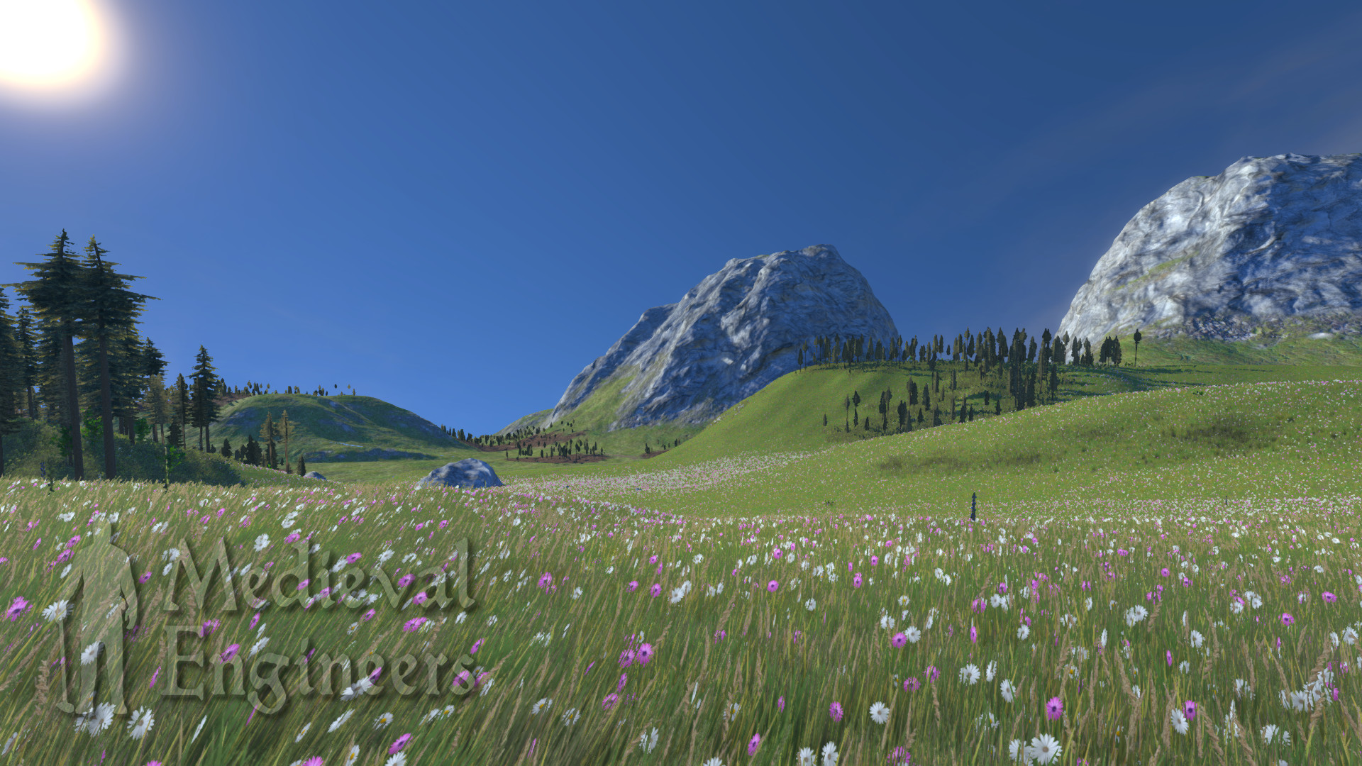 Screenshot of Medieval Engineers server hosting