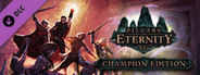 Pillars of Eternity: Champion Edition Upgrade Pack