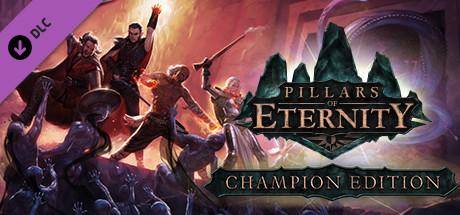 Купить Pillars of Eternity: Champion Edition Upgrade Pack (DLC)