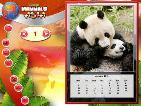 Скриншот из Wildlife Creative Studio