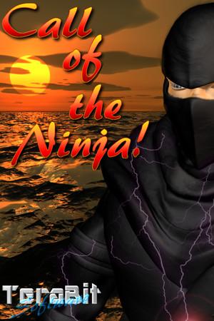 Call of the Ninja! poster image on Steam Backlog