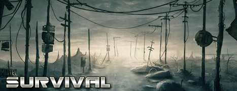 Survival: Postapocalypse Now - 生存:末世启示录