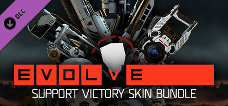 Support Victory Skin Pack on Steam