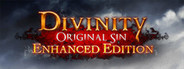 Divinity: Original Sin - Enhanced Edi...