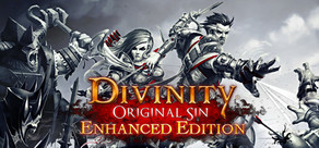Divinity: Original Sin Enhanced Edition cover art