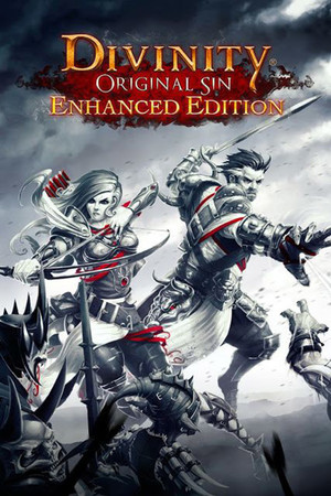 Divinity: Original Sin - Enhanced Edition poster image on Steam Backlog