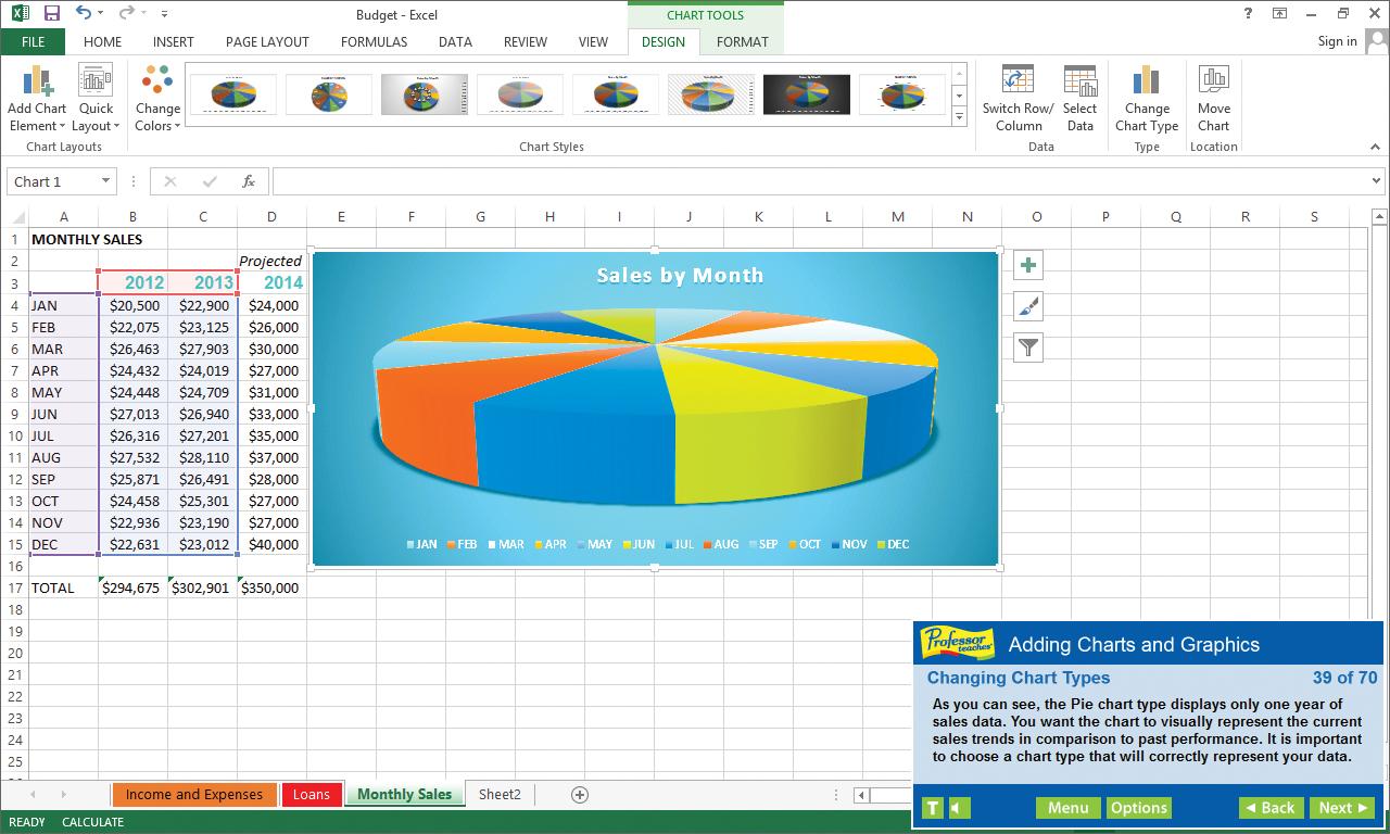 Professor Teaches® Excel 2013 & 365