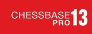 ChessBase 13 Pro