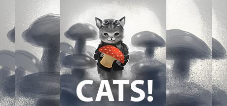 CATS! title thumbnail