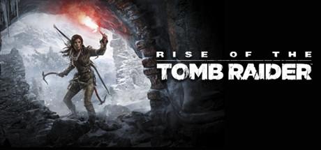 Купить Rise of the Tomb Raider + Metro 2033