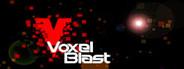 Voxel Blast