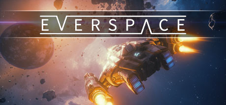 EVERSPACE technical specifications for laptop