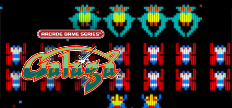 ARCADE GAME SERIES: GALAGA cover art