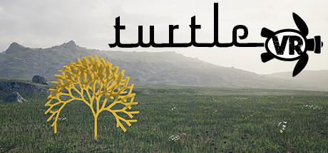 Turtle VR