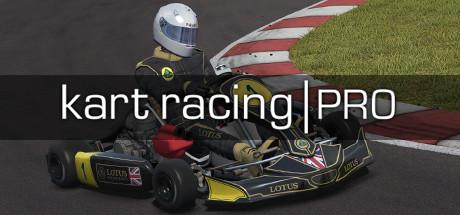 Kart Racing Pro Release 8 Free Download