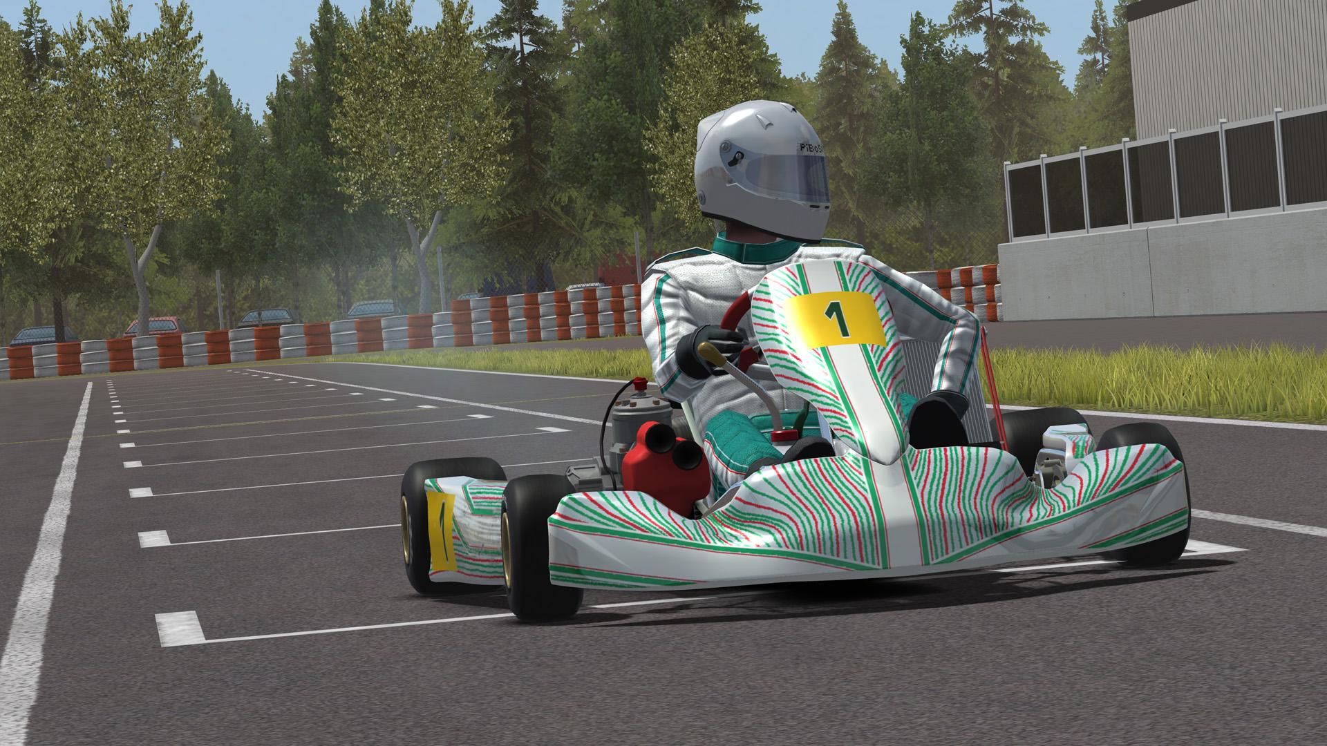 Kart Racing Pro