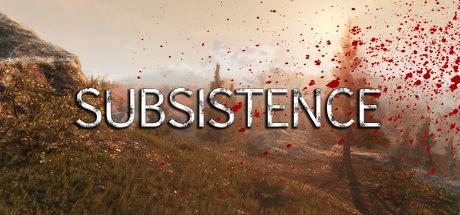 subsistence pc