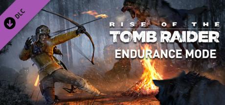 Endurance Mode   DLC