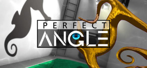 PERFECT ANGLE: The puzzle game based on optical illusions cover art