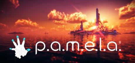 P.A.M.E.L.A. cover art