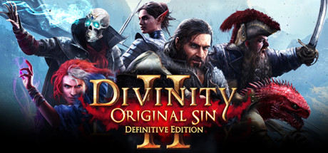 Divinity: Original Sin 2 - Definitive Edition Cover art wide Steam