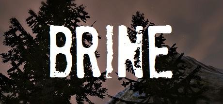 Купить Brine