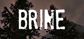 Brine cover art