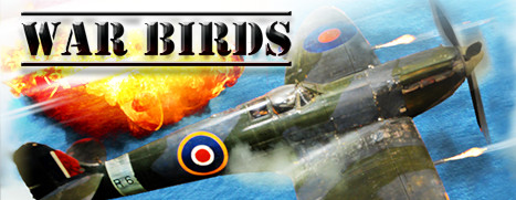 War Birds: WW2 Air strike 1942