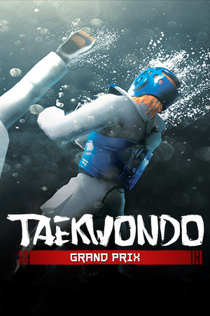 Taekwondo Grand Prix poster image on Steam Backlog