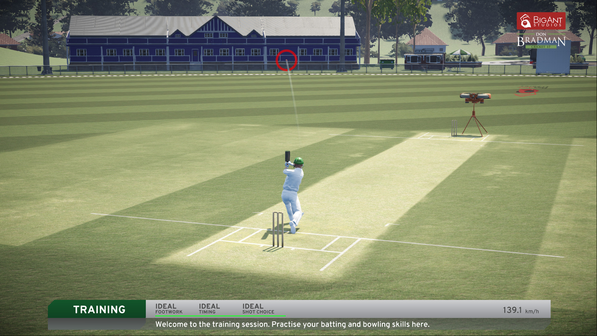 don bradman cricket 17 free download for android mobile