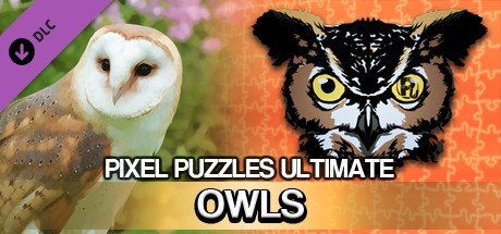 Pixel Puzzles Ultimate: Owls 2016 pc game Img-1