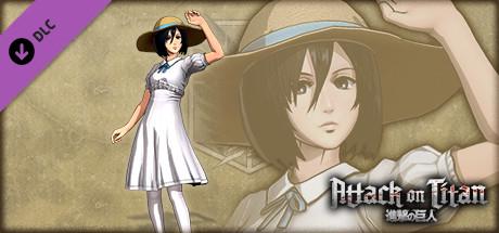 Attack on Titan - Mikasa Costume - Summer Festival