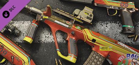 Rainbow Six Siege -  Racer GSG 9 Pack