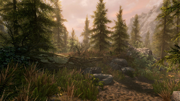 The Elder Scrolls V: Skyrim Special Edition screenshots