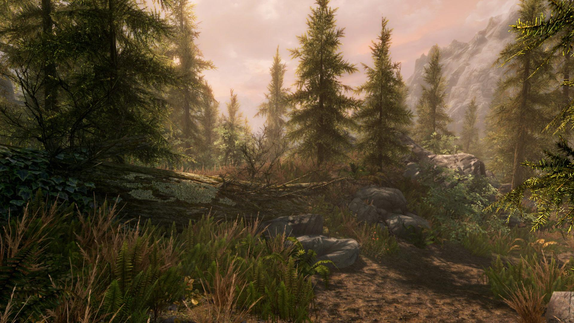 The Elder Scrolls V: Skyrim Special Edition · AppID: 489830