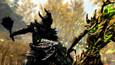 The Elder Scrolls V: Skyrim Special Edition picture4